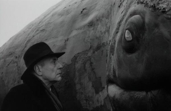 werck-whale